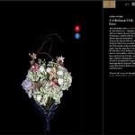 w-magazine-zoe-buckman-art-article