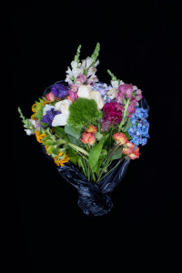 Fine Art Photography C Print: Mix of vibrant living and dying flower bouquet against black background