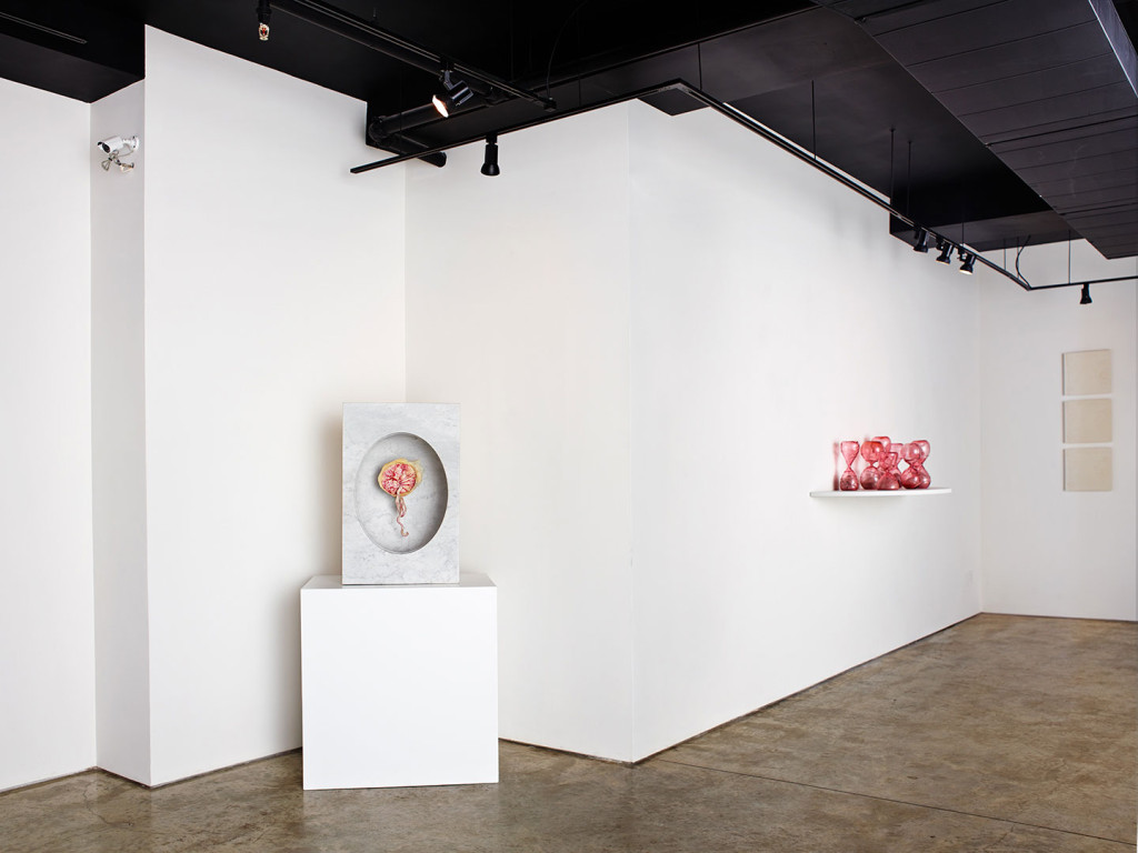 Female artist Zoe Buckman displays her plastinated placenta at Garis & Hahn Gallery in New York City.